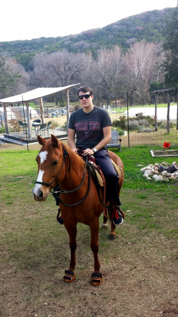 nick horse